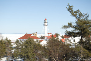 Image shows the lighthouse at Whitefish Point Bird Observatory, framed by pine trees and covered in snow. Photo © Nova Mackentley.